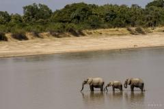 ZambiaAfrica-4