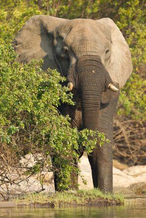 Africa2011-212.jpg
